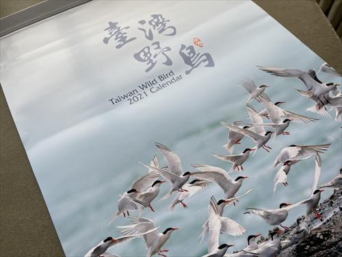 野鳥カレンダー,臺灣野鳥,台湾の鳥,ヒメフクロウ,ハリオハチクイ,ミカドキジ,台湾探鳥日記