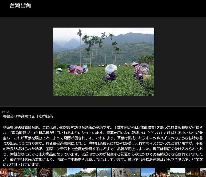蜜香紅茶,舞鶴台地,台湾茶,花蓮県,台湾紅茶,瑞穂
