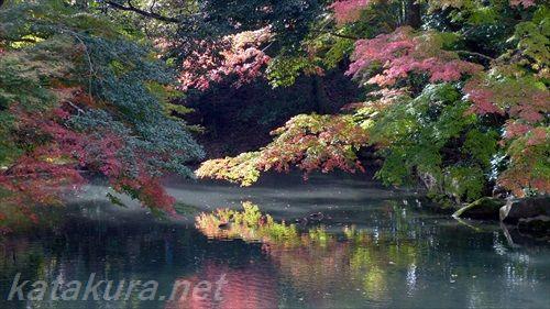 後楽園,2015年,紅葉,岡山