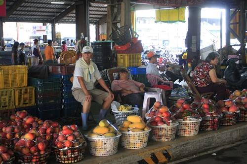 玉井,アップルマンゴー,台南,愛文芒果,2016