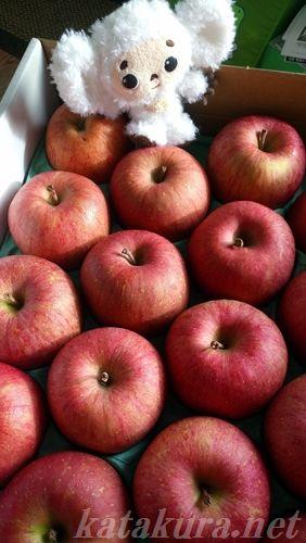 リンゴ,白チェブ,青森,台湾,チェブラーシカ