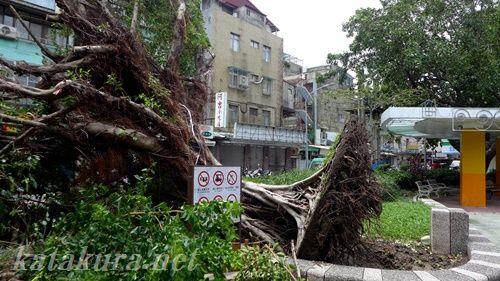 台風,台湾,台北