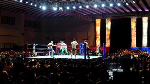 新日本プロレス,台湾,2016,本間,田口