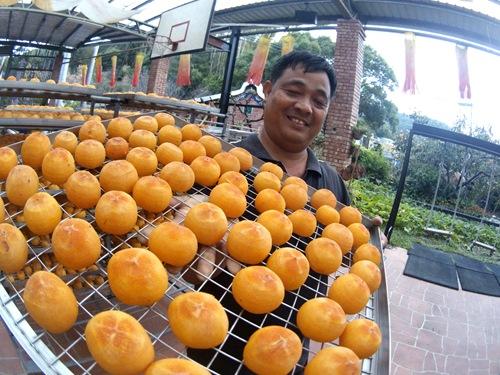 金漢柿餅,新埔,観光農園,新竹縣