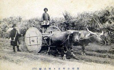 高砂族,日本統治時代,アミ族,プユマ族,友愛グループ,片倉佳史,台湾体験,台湾探見,もっと知りたい台湾