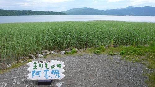 まりも,片倉佳史,講演,シンポジウム,阿寒湖,釧路市