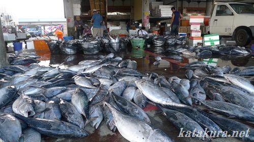 馬公漁港,澎湖,魚市場