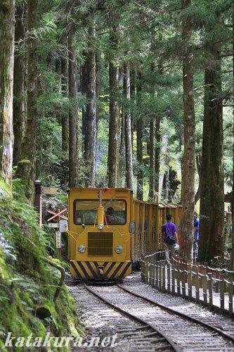 太平山,トロッコ,宜蘭,森林鉄道