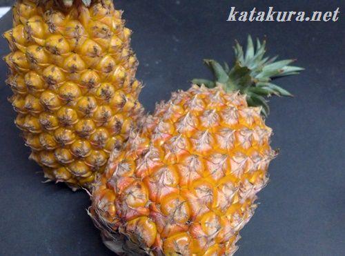 大樹,鳳梨,パイナップル,高雄