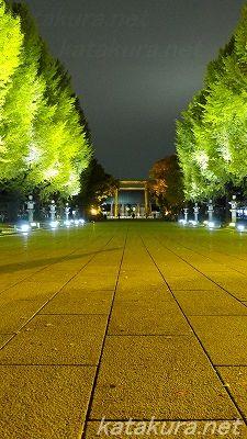 靖国神社,銀杏,紅葉