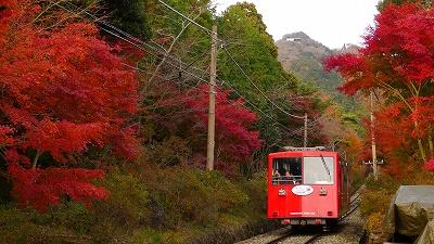 筑波山,紅葉,ケーブルカー