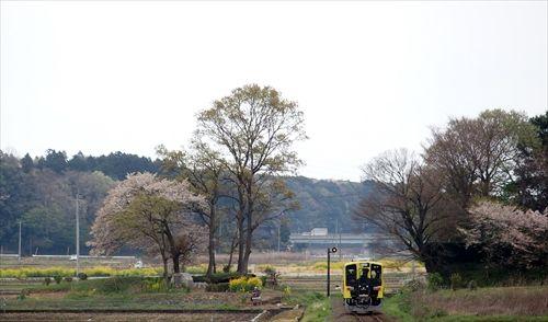 ひたちなか海浜鉄道,中根駅,茨交