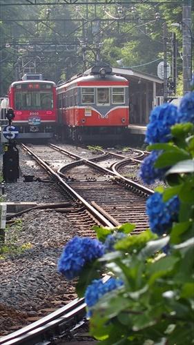 登山電車,箱根
