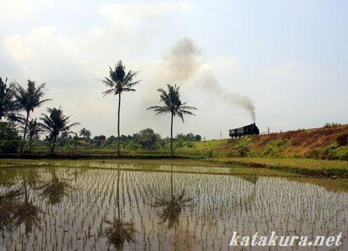 ジャワ島,アンバラワ,保存鉄道,インドネシア,ラックレール
