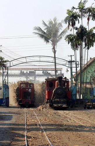 パンカ,ジャワ,インドネシア,SL,シュガートレイン
