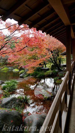 好古園,姫路城,紅葉
