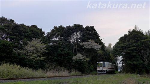 ひたちなか海浜鉄道,殿山駅,茨交