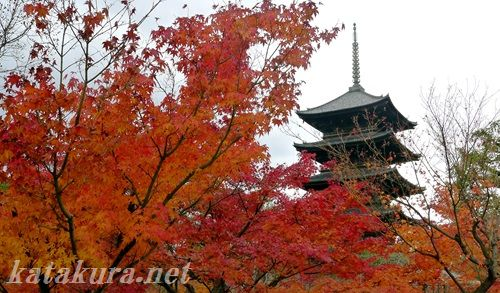 東寺,紅葉,京都