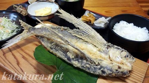 飛び魚定食,屋久島観光センター