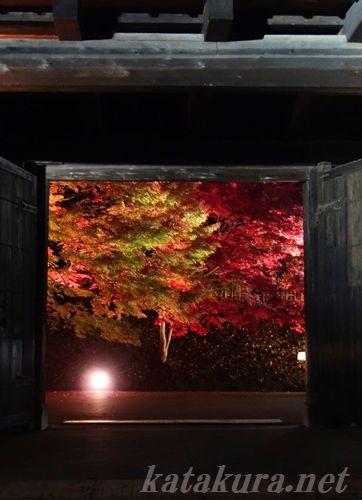 弘前城,紅葉,11月6日