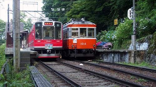 箱根登山鉄道,あじさい,大平台,紫陽花,ベルニナ