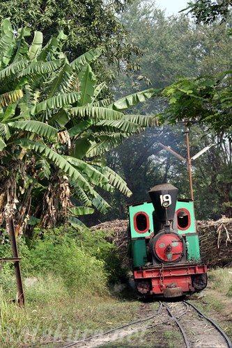 スラギ,ジャワ,SL,インドネシア