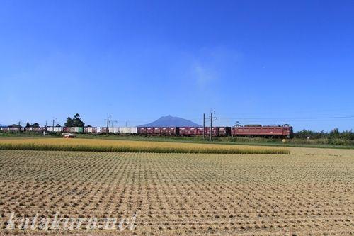 奥羽本線,貨物列車