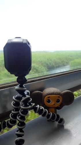 根室本線,チェブラーシカ,湿原,ビデオカメラ