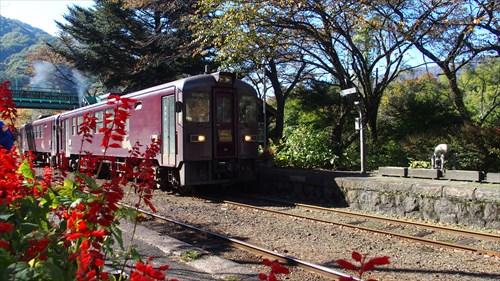 沢入駅,わたらせ渓谷鉄道,紅葉,足尾線