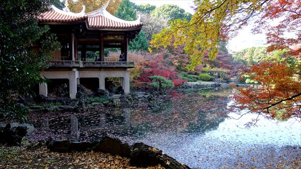 新宿御苑,台湾閣,森山松之助