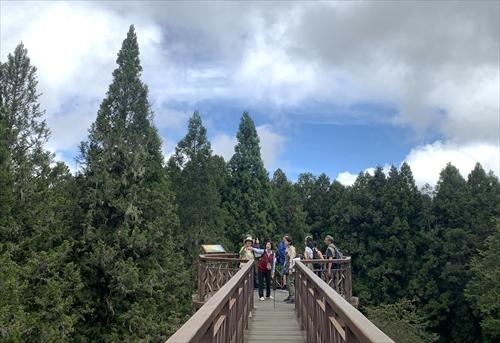 阿里山,森林浴,沼平駅,沼平車站,台湾体験,台湾探見,阿里山森林鉄道