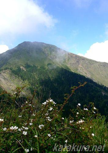 中央山脈,合歓山,武嶺